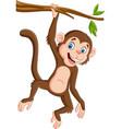 cartoon monkey hanging in tree branch vector image vector image