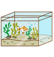 cute goldfish swimming in tank vector image