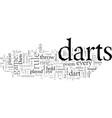 darts rule vector image vector image