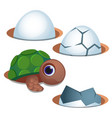 pretty blue-eyed little turtle and cracked egg vector image