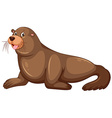 Sea lion with happy face vector image vector image