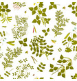seamless pattern with legumes plants vector image vector image
