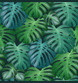 seamless tropical pattern with green vector image vector image