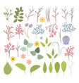set of plants flowers and herbs vector image vector image