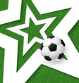 Soccer football poster Grass background with white vector image