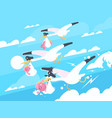 storks carry babies in beaks vector image