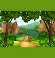 a track to the forest vector image vector image