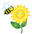 bee and yellow flower vector image