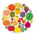 Flat fruit icons gathered in a circle vector image vector image
