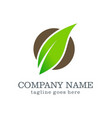 green leaf organic company logo vector image vector image