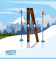 winter extreme sports vector image