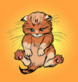 cute kitten pet cat vector image vector image