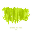 greenery hand paint watercolor texture background vector image vector image