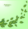 realistic fly green leaves pattern background vector image vector image
