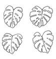 set monstera leaves design element vector image vector image