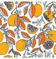 sunny grapefruits summer pattern vector image