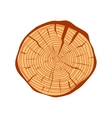 Tree wood slices vector image vector image