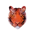 Abstract Tiger Head vector image vector image