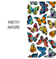 decorative butterflies background vector image vector image