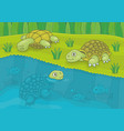 family turtles vector image