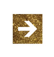 glitter golden isolated arrow flat icon vector image vector image
