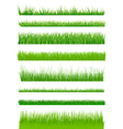 Green grass set vector image