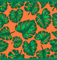 seamless pattern with monstera tropical leaves vector image