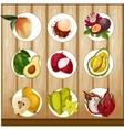 tropical fruit set vector image