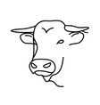animal bull icon design clip art line icon vector image vector image