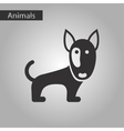 black and white style icon dog pitbull vector image vector image
