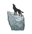 coyote howling on rock sketch vector image vector image