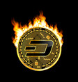 crypto currency dash golden symbol on fire vector image vector image