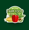 farm vegetables badge or icon organic food vector image
