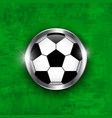 football icon soccer ball with glass covered vector image vector image