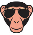 monkey with aviator sunglasses color vector image vector image