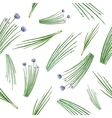 Watercolor seamless pattern hand drawn herb chives vector image vector image