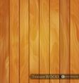 wood background- texture light brown wooden vector image vector image