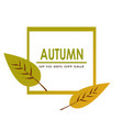 autumn sale decorate with two leaves for shopping vector image vector image