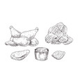 chicken nuggets and chips sketch style icon set vector image vector image