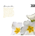 Floral invitation card with beautiful spring