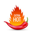fresh red hot chili pepper vector image