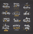 merry christmas calligraphic letterings set vector image