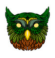 owl head in floral style design element for vector image vector image