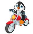 Penguin Motorcyclist vector image vector image