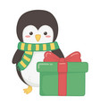 penguin with gift decoration merry christmas vector image vector image