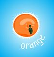 ripe orange vector image vector image