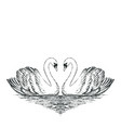 two swans sketch hand drawn vector image vector image