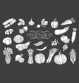 vegetables glyph icons set vector image vector image