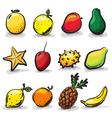 ExoticFruits vector image