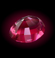 beautiful shiny rubellite vector image vector image